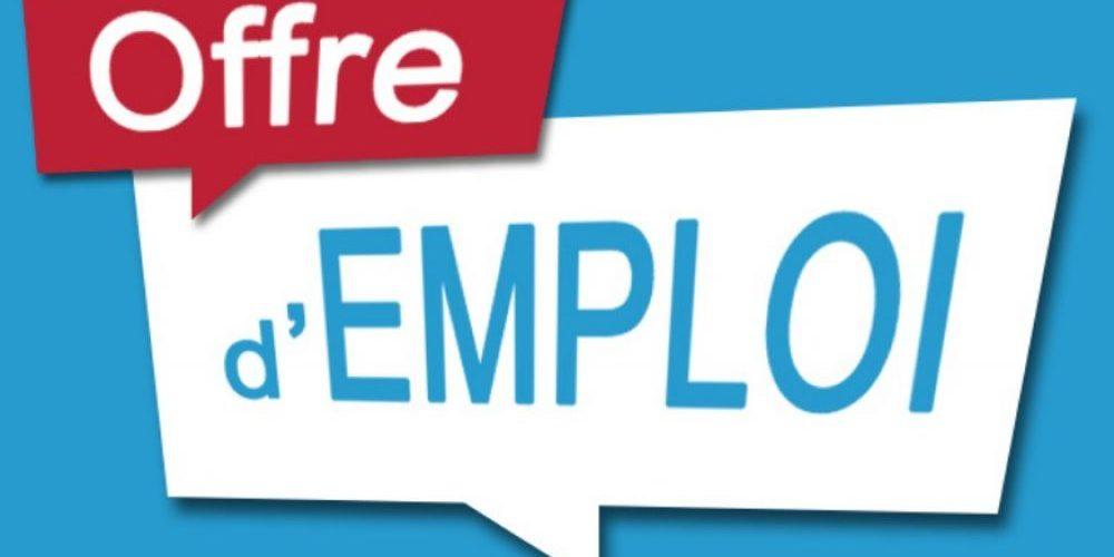 offre d'emploi sur Tchaman TV